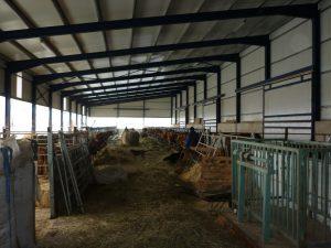 instalaciones ganadería Las Candarias